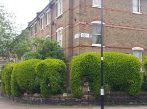 "Tim Bushe: ""I thought elephants because it is a very big hedge."""