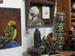 Louis Masai's studio - can you see the spray paint in the taxidermy case?