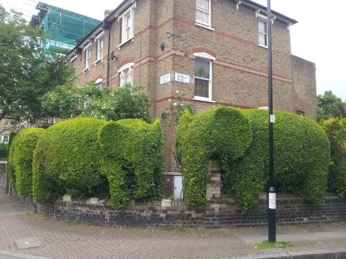 Elephant hedge cut by Tim Bushe.