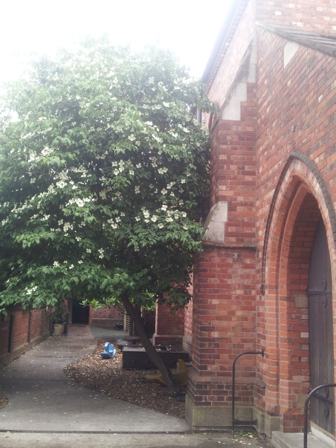 ST Thomas the Apostle parish church - Monsell Road entrance.